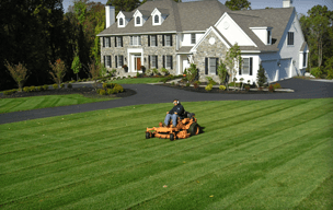 Landscaping Contractor Servicing Metrowest Boston